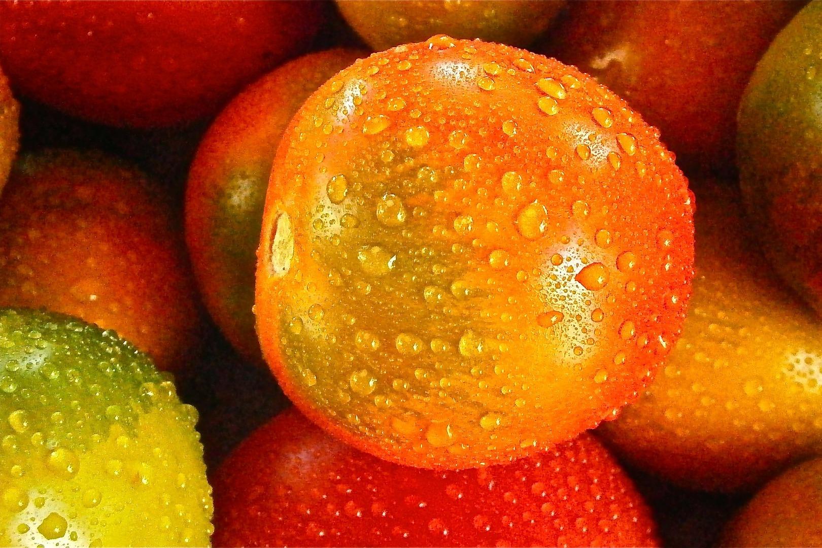 dot_blog_header_tomaten